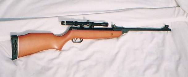 GAMO rifle1.jpg