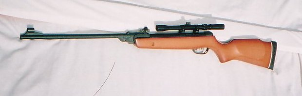 GAMO air rifle2.jpg
